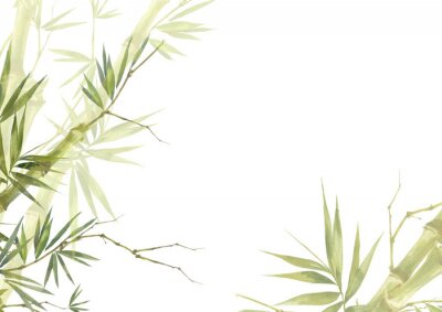 Quadro Watercolor illustration painting of bamboo leaves , on white background