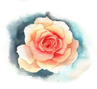 Quadro Watercolor rose