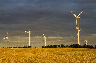 Quadro Wiatraki (turbiny wiatrowe) w świetle wschodzącego słońca