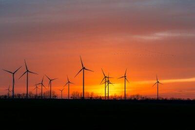 Quadro Windräder em der Natur com Vogelschwarm em Sonnenuntergang