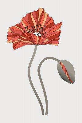 Quadro бутон  и цветок мака с необычными лепестками