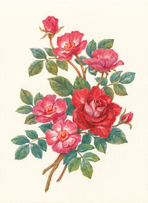 Quadro Букет с цветами шиповника, акварель.