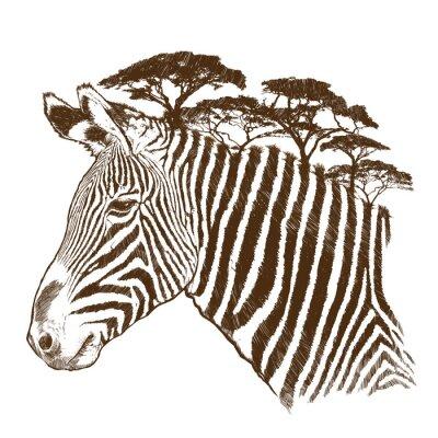 Quadro Zebra com árvore